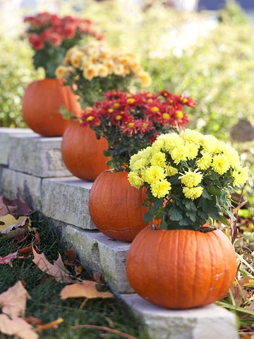 Pumpkin Flowerpots