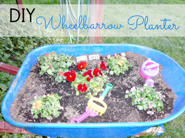 Here Comes the Sun: DIY Wheelbarrow Planter