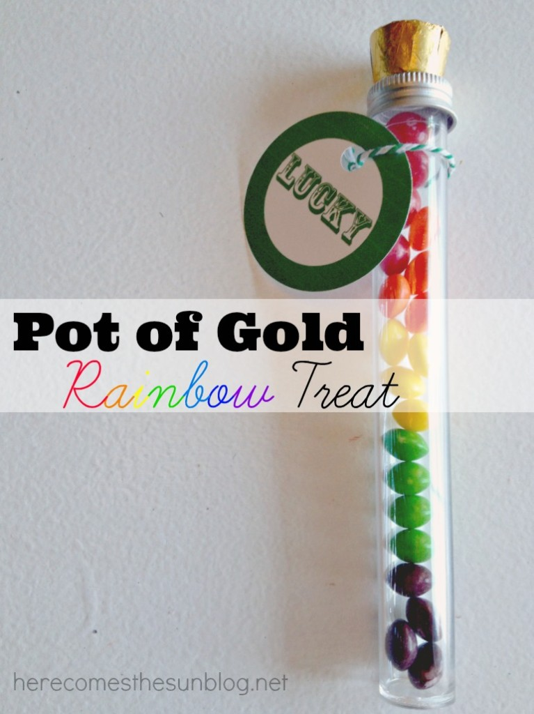 Cute Pot of Gold Rainbow Treat for St. Patrick's Day I herecomesthesunblog.net