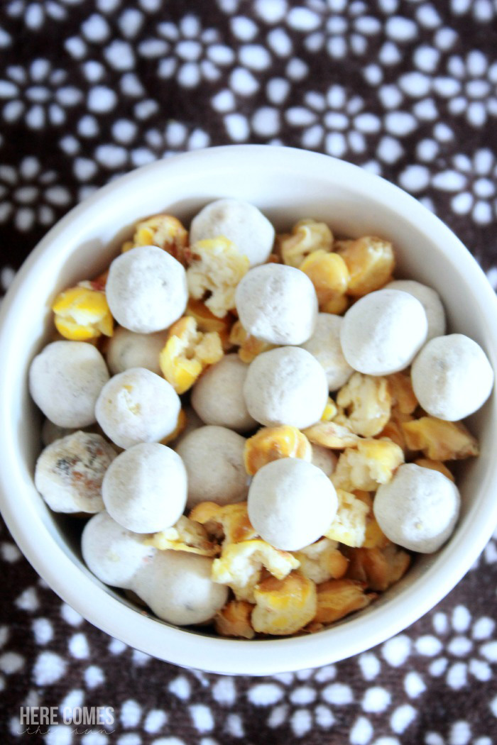 I LOVE these healthy Fall snack ideas! #Fall4NatureBox