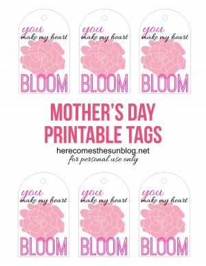 Bloom-tag-sheet