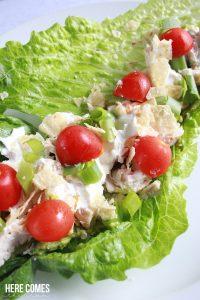 Chicken and Avocado Mash Wrap