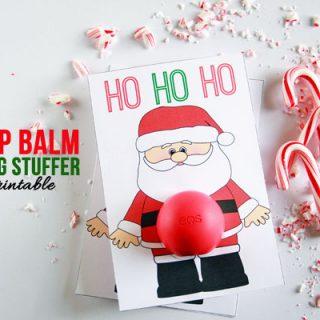 eos lip balm stocking stuffer horizontal