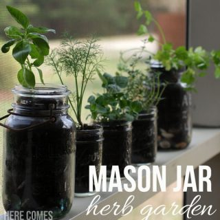 Create this Space Saving Mason Jar Herb Garden in Minutes!