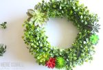 Create a gorgeous succulent and boxwood wreath with this easy tutorial!