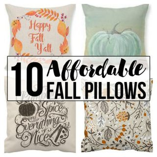 10 Affordable Fall Pillows to Beautify Your Home