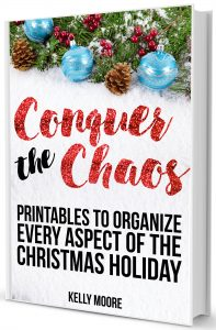 GET MY CHRISTMAS EBOOK!