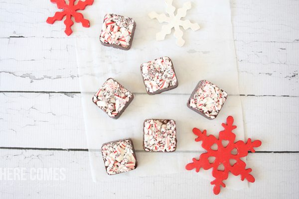 These chocolate peppermint squares are easy to make AND delicious. And did I mention they are no-bake? Click to get the recipe.