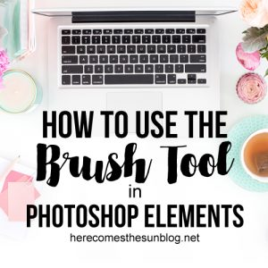 How to Use the Brush Tool in Photoshop Elements